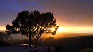 Stock Video Footage of A beautiful sunrise or sunset along the California coast with a silhouetted tree