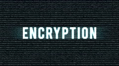 Backgound code with text encryption - stock footage