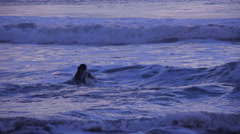 A surfer wades through the waves during a beautiful Southern California sunset. Stock Footage