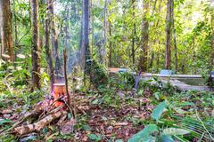 Amazonian Campsite Stock Photos