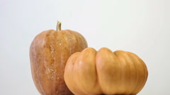 Pumpkin rotating Stock Footage