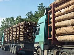 Column timber trucks with logs moving on the road Stock Photos
