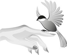 Black and white drawing, bird sits on the finder. EPS10 vector illustration Stock Illustration
