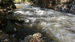 A small foamed river flows through sunny stony riverbed Stock Footage