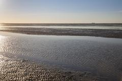 Stock Photo of Evening mood in the Lower Saxon Wadden Sea National Park at low tide Lower