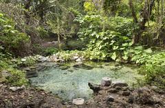 Spring with water Arroyo de la Boza Azul Apazapan Veracruz Mexico North America - stock photo