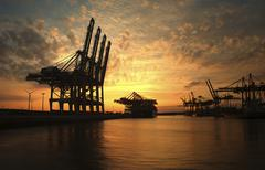 Loading cranes at sunset in the Waltershofer Harbor Hamburg Germany Europe - stock photo