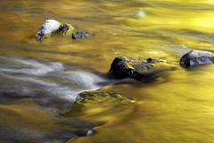 Stones in the riverbed Wutachschlucht gorge Black Forest BadenWurttemberg - stock photo