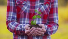 Farmer holding small plant in hands Stock Footage