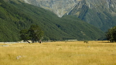 Hikers walking a trail near Broderick Hut, New Zealand - stock footage