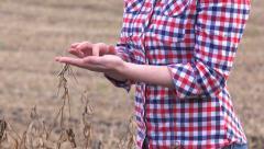 Female farmer in soy bean field Stock Footage
