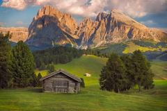 Seiser Alm with Langkofel group, South Tyrol, Dolomites, Italy Stock Photos