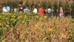People at agricultural fair Stock Footage