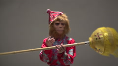 Orange, red monkey symbol 2016, the character in the costume of the Chinese Stock Footage