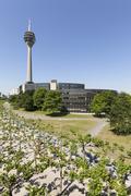 Rhine Tower and North RhineWestphalia parliament Dusseldorf Rhineland North Stock Photos