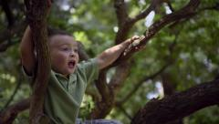Little Boy Climbs Around In A Tree, Talks To Someone Off-Screen - stock footage