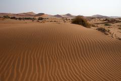 Stock Photo of Sand dunes in Namib Desert NamibNaukluft National Park Sossusvlei Namibia