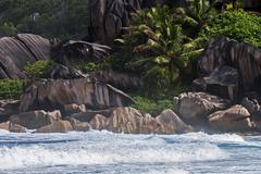 Stock Photo of Sea with granite rocks and palm trees Grand Anse La Digue Island Seychelles