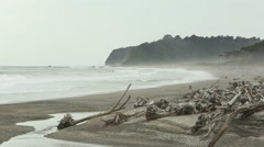 Stock Video Footage of driftwood beach on the West Coast of New Zealand