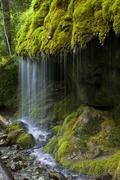 Mossy waterfall Wutachschlucht gorge Black Forest BadenWurttemberg Germany - stock photo