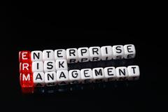 ERM Enterprise Risk Management dices black - stock photo