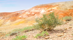 Stock Video Footage of Altai red clay desert landscape in Kosh-Agach hollow near Kyzyl-Chin river