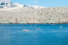 Stock Photo of Icebergs in front of the glacier, Svalbard, Arctic