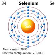 Symbol and electron diagram for Selenium - stock illustration