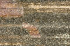 Old Dirty and Scratched Wood Background - stock photo