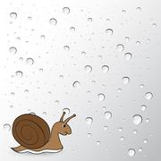 snail - stock illustration
