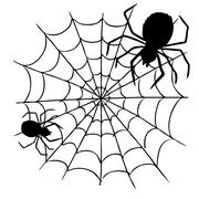 spider and web - stock illustration