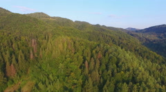 Aerial: flight in Carpathians mountains Stock Footage