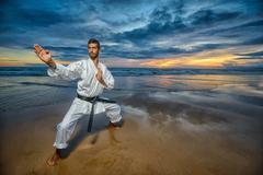 Karate master in defense position Stock Photos