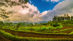 4K Timelapse. Sunset and clouds over rice terraces Stock Footage