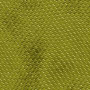 Snake skin - stock illustration
