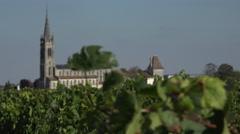 Pomerol in Bordeaux vineyard Stock Footage