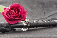 Katana and red rose Stock Photos