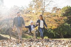 Family holding hands and walking in autumn leaves Stock Photos