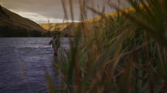 Man fly fishing in beautiful river at sunrise - stock footage