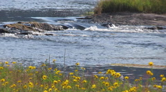 BRoll River Stock - stock footage