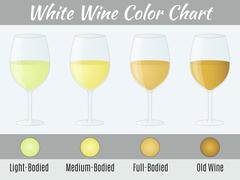 White wine color chart. - stock illustration