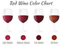 Stock Illustration of Red wine color chart. Hand drawn wine glasses. Vector concept.