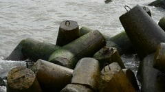 Tetrapods at the Baltic Sea Stock Footage