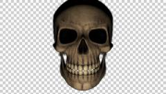 Scary Skull moving towards camera (with alpha channel ) - stock footage