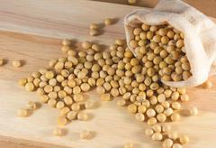 Soybean or yellow bean in sack on wood background Stock Photos