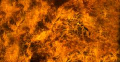 fire background or texture - stock photo