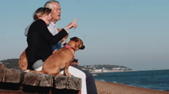 Retired Senior Couple sitting on jetty on beach with dogs Stock Footage