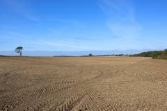 Cultivated soil in autumn Stock Photos
