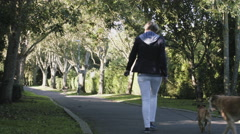 Retired Senior Couple walking in Park with dogs Stock Footage