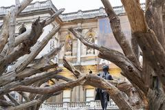 Ai Wei Wei's Tree at the Royal Academy of Arts - stock photo